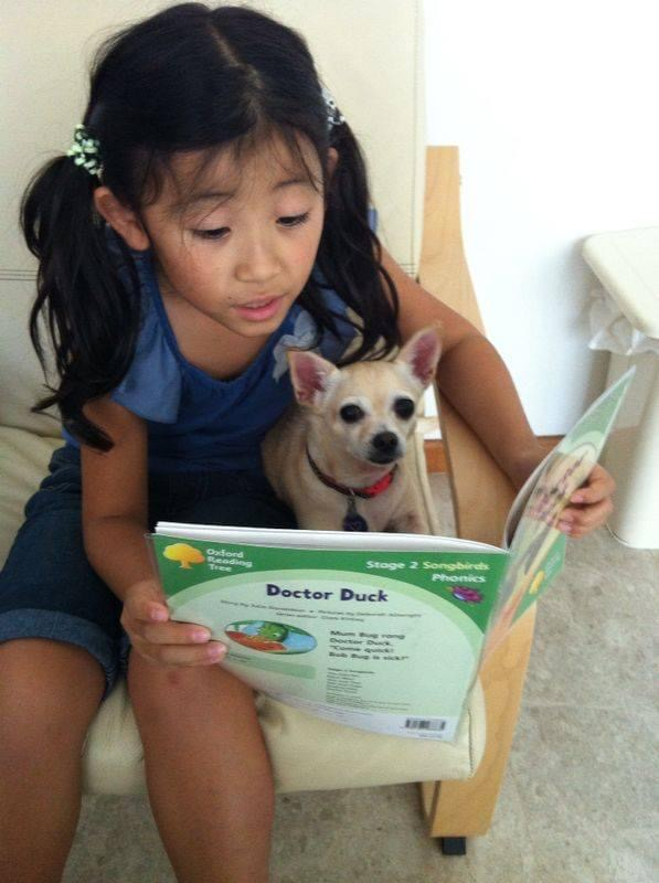 Readings books with furry friends, 2014